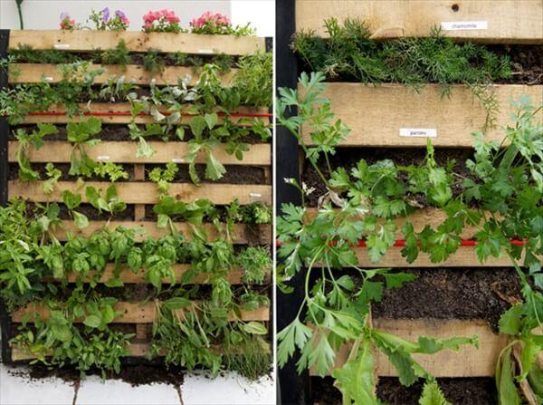 pallet-vertical-garden (7)