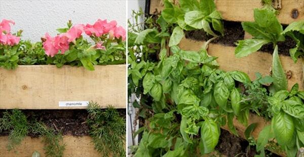 pallet-vertical-garden