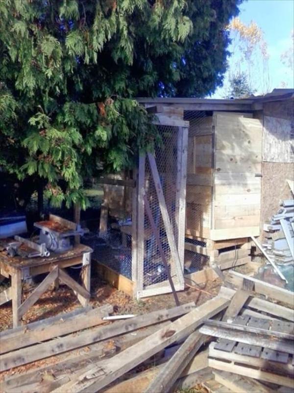 Pallet Lumber Chicken Coop