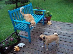 recycled pallet bench for deck