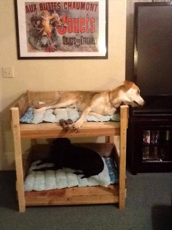 recycled pallet pet bunk bed