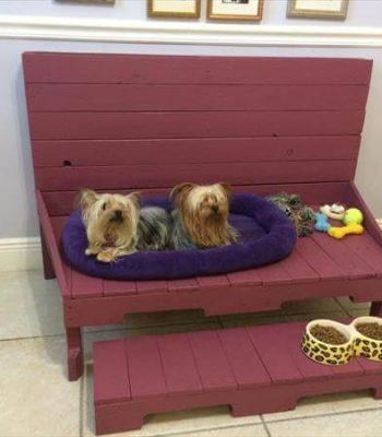 recycled pallet dog bed and bench