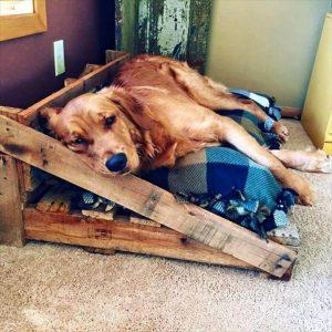 Rustic Dog Bed From the Pallets