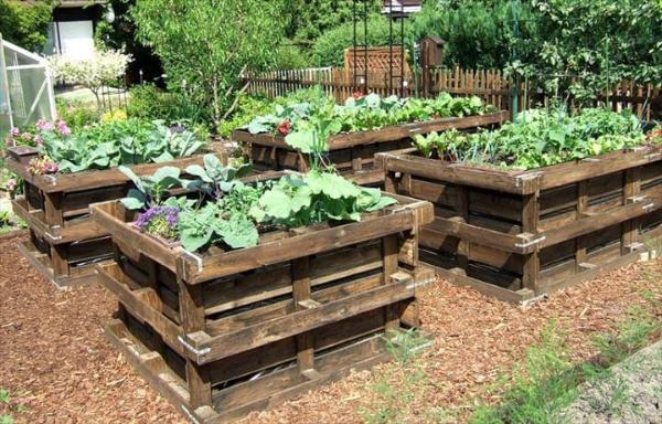 raised pallet garden beds