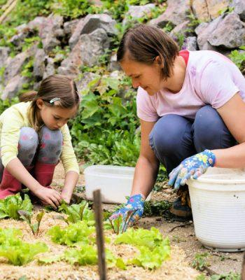 Best Garden Activities You Must Try During Lock Down (1)